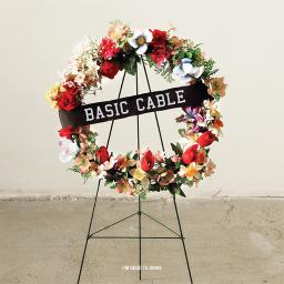 basic_cable