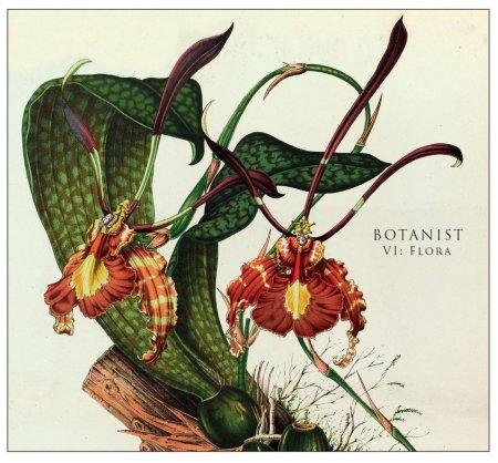Botanist_VI-Flora