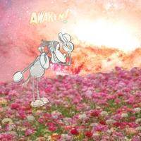 awaken43