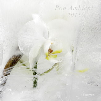 kompakt315-pop_ambient15