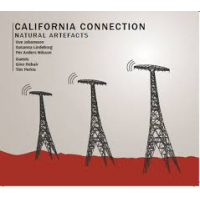 californiaconnection_naturalartefacts_ga