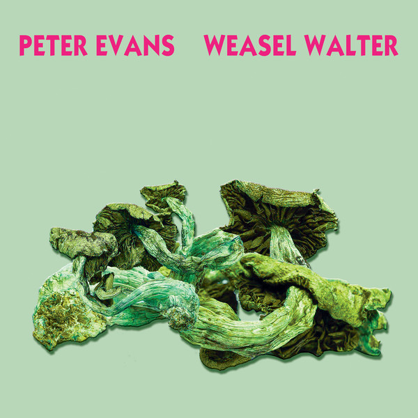 album cover for Poisonous by Peter Evans and Weasel Walter
